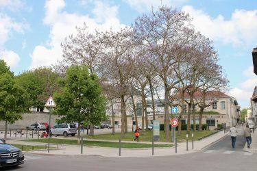 Campus des Comtes de Champagne